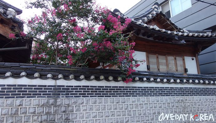 bukchon hanok village tradition