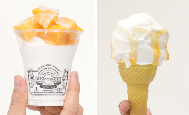 Softree Ice Cream