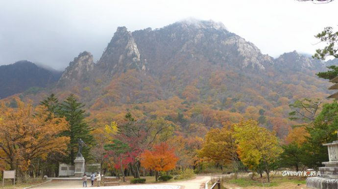Korea Fall Foliage